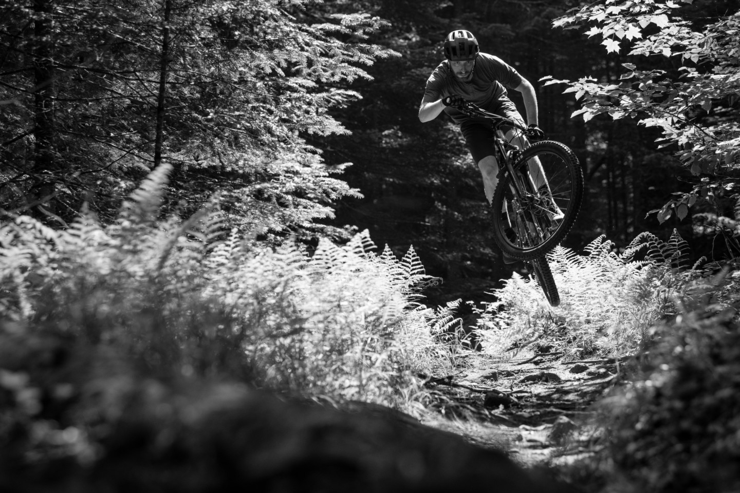 summer mountain biking in the Adirondacks